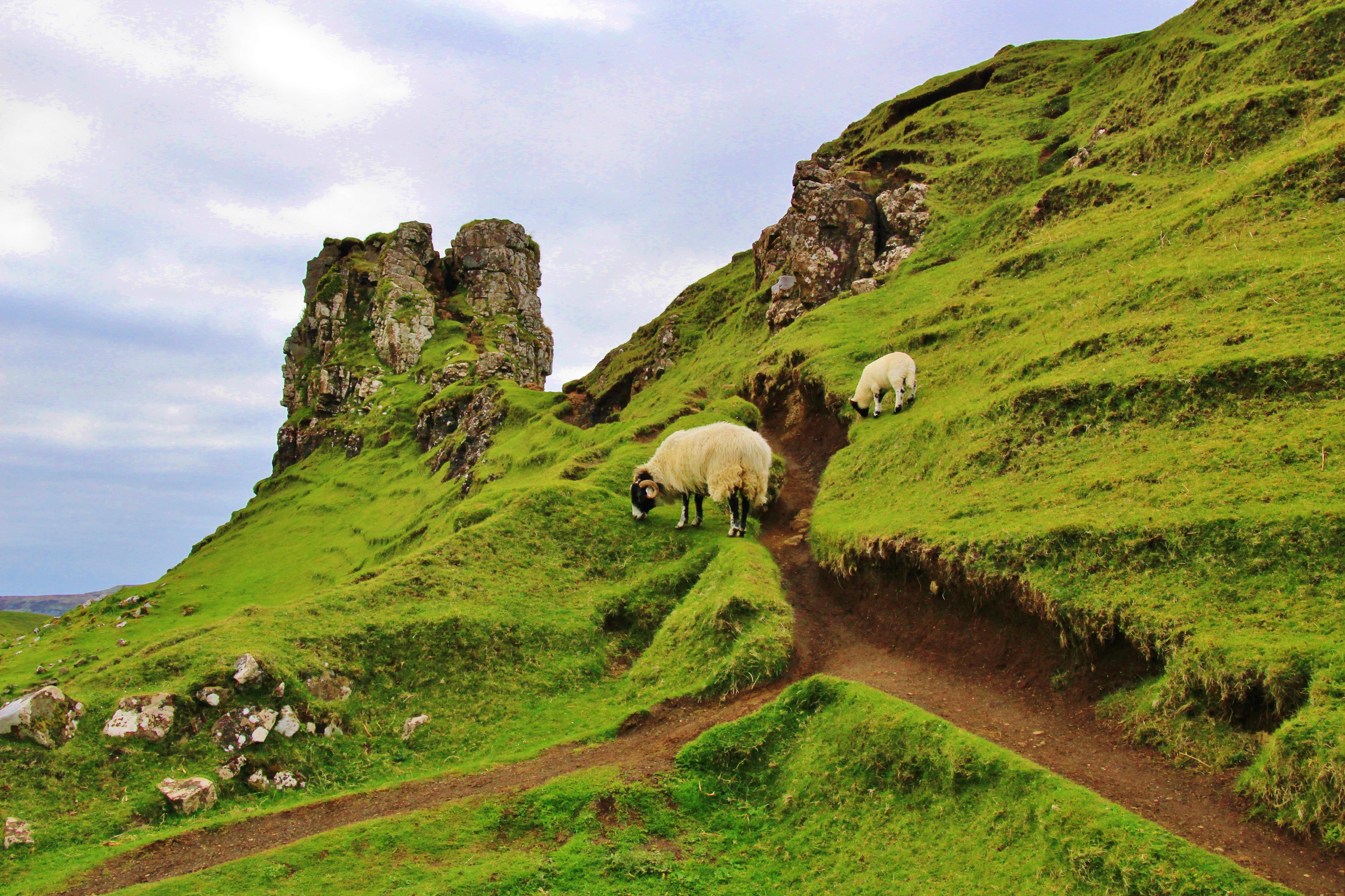 traveling through scotland, travelblog
